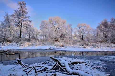 FOTKA - Zašlá sláva rybníka