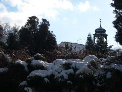 FOTKA - zima.109