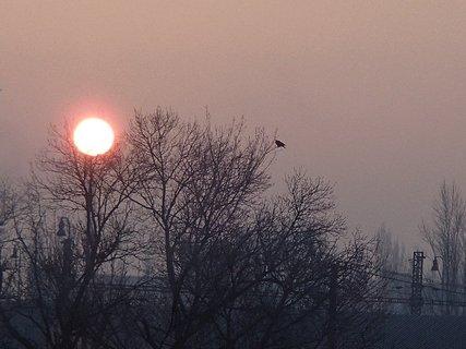 FOTKA - východ slnka 06.01.2013a
