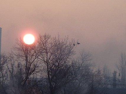 FOTKA - východ slnka 06.01.2013b