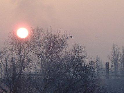 FOTKA - aj vrany sledujú východ slnka