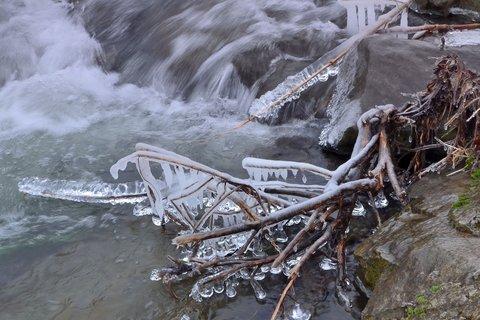 FOTKA - Démanty v řece