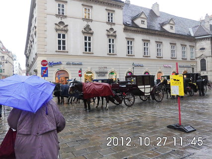FOTKA - zájezd do Vídně 64, koňský povoz