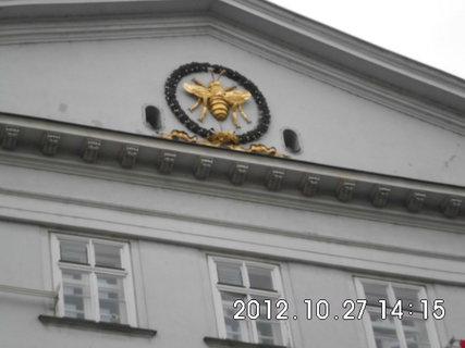 FOTKA - zájezd do Vídně 82, včelka