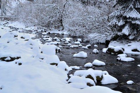 FOTKA - čistá a neposkvrněná zima