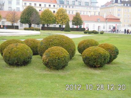 FOTKA - zájezd do Vídně 156, Belvedere