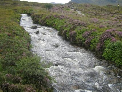 FOTKA - potok a vřesy ve Skotsku