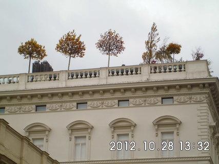 FOTKA - zájezd do Vídně 204, Musikverein