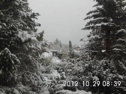 FOTKA - zájezd do Vídně 233, nasněžilo