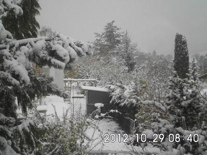 FOTKA - zájezd do Vídně 235, nasněžilo