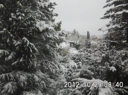 FOTKA - zájezd do Vídně 236, nasněžilo