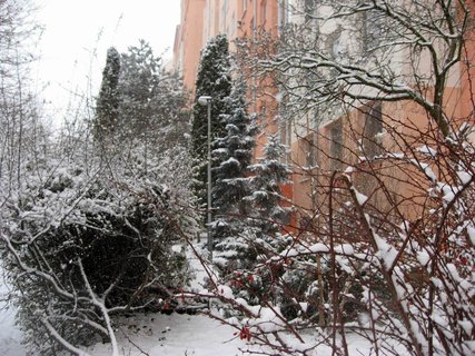 FOTKA - Zima na sídlišti 1