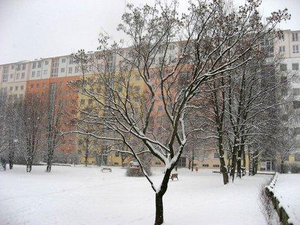 FOTKA - Zima na sídlišti 3