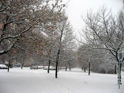 FOTKA - Zima na sídlišti 4