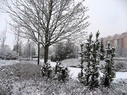 FOTKA - Zima na sídlišti 7