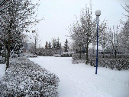 FOTKA - Zima na sídlišti 8