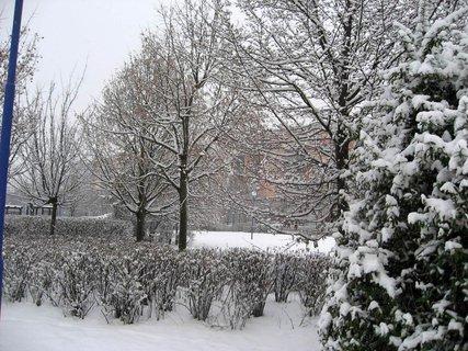 FOTKA - Zima na sídlišti 9