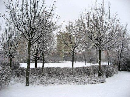 FOTKA - Zima na sídlišti 10