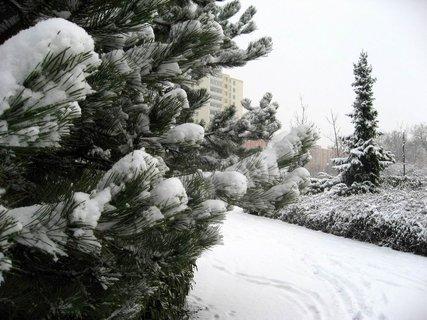 FOTKA - Zima na sídlišti 11