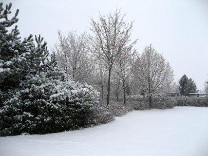 FOTKA - Zima na sídlišti 12