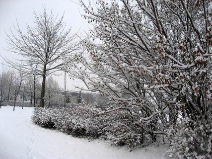 FOTKA - Zima na sídlišti 13