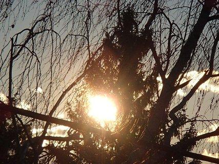 FOTKA - slnko presvitá