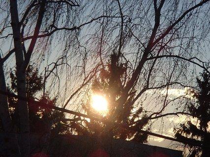 FOTKA - slnko vykúka spoza stromu...