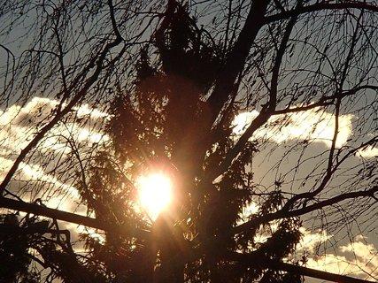 FOTKA - aj mraky sa prihnali, ale slniečko svietilo naďalej