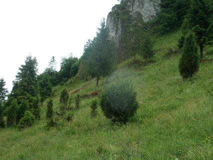 FOTKA - vandrem po Slovensku