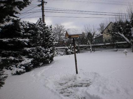 FOTKA - Nová zima 1