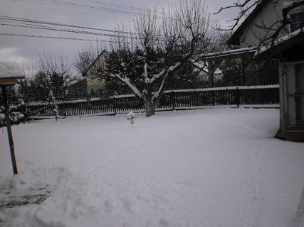 FOTKA - nová zima 2