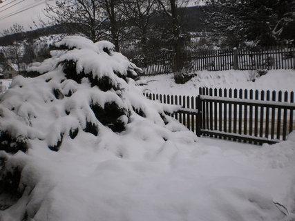 FOTKA - nová zima 9