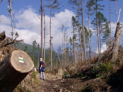 FOTKA - Vysoké Tatry 10