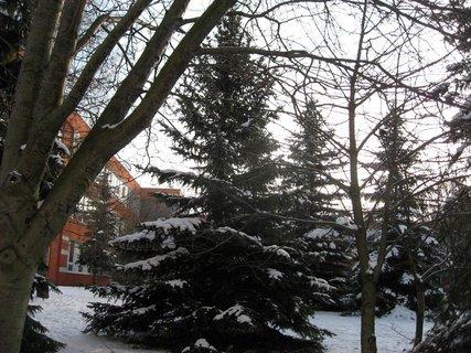 FOTKA - Zima na sídlišti 26