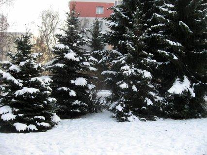 FOTKA - Zima na sídlišti 27