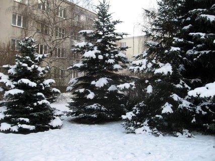 FOTKA - Zima na sídlišti 28