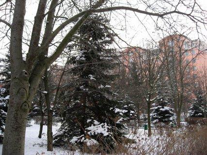 FOTKA - Zima na sídlišti 36