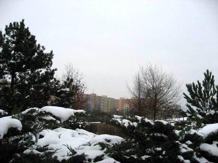 FOTKA - Zima na sídlišti 39