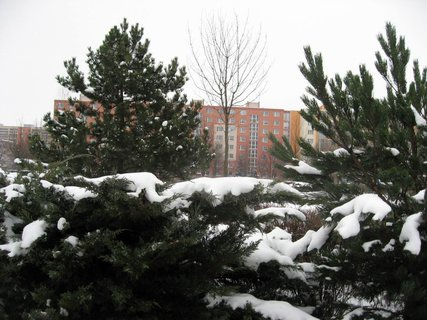 FOTKA - Zima na sídlišti 40