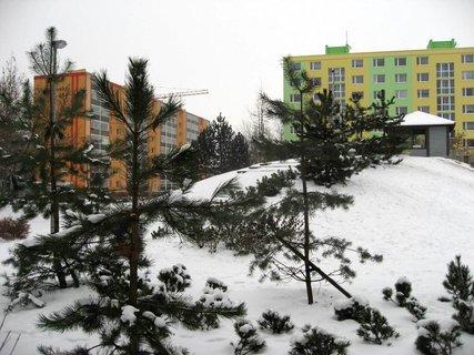 FOTKA - Zima na s�dli�ti 49