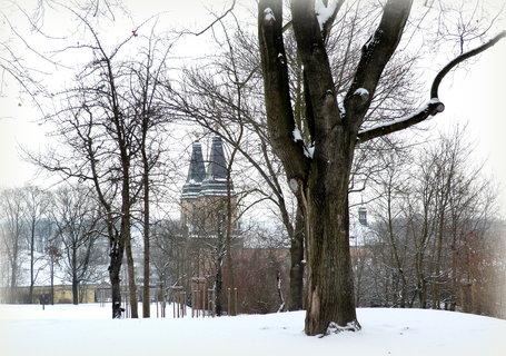 FOTKA - Pohled z parku