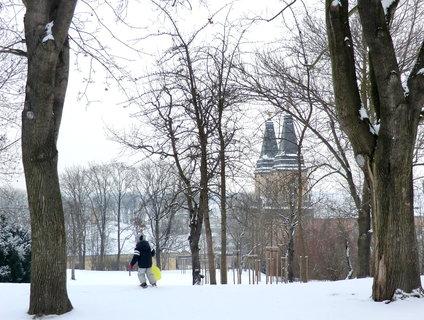 FOTKA - Na svahu v parku