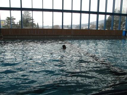 FOTKA - potápění 2
