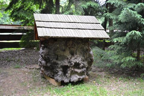 FOTKA - Dřevěné městečko.