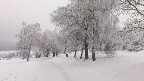 FOTKA - cesta z Kuklíku do Odrance a zpět  8