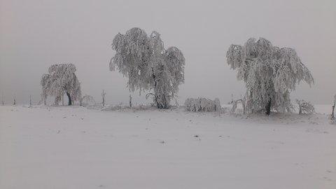 FOTKA - cesta z Kuklíku do Odrance a zpět  24