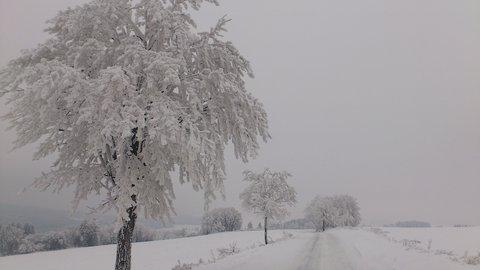 FOTKA - cesta z Kuklíku do Odrance a zpět  25