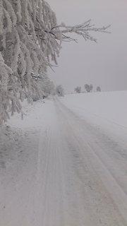 FOTKA - cesta z Kuklíku do Odrance a zpět  27