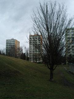 FOTKA - 1.2.2013.