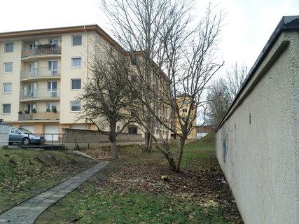 FOTKA - 1.2.2013...